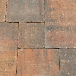 Abbeystones wildverband 6 cm Zomerbont
